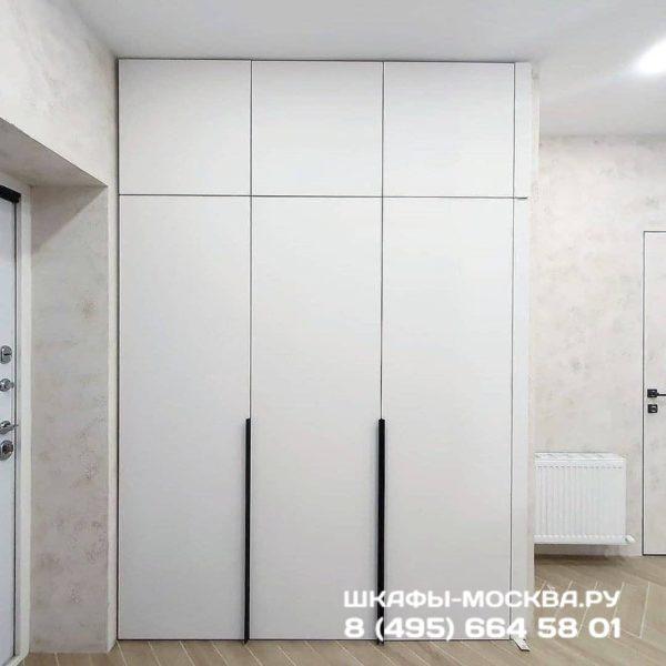 Шкаф в эмали 003