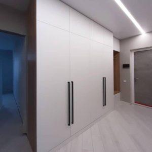 Шкаф в эмали 004