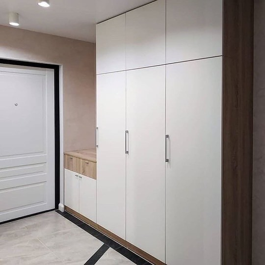 Шкаф в эмали 005